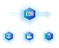 深信服EDR端点安全软件V3.0-50点套餐